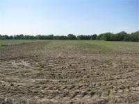 This 320 acres has it all, highly tillable for crop