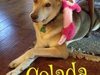 Colada's story Please understand we must conduct home