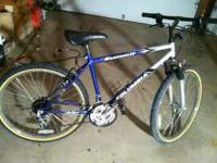 18 speed 19 inch blue mens style mountain bike