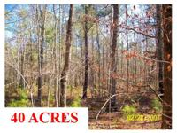 40 ACRE RECREATIONAL & & INVESTMENT TRACT. Located
