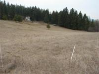 Level 3.39 Acres close to Colville. Power and phone at