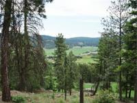 BEAUTIFUL TIMBERED 30+ acre parcel just 9 miles south
