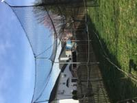 Full Commercial Batting Cage 12' x 14' x 55' Bought