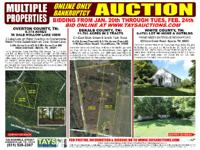 ! ONLINE ONLY BANKRUPTCY AUCTION. * 2 Lots w/ Dale