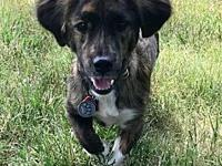 Cooper in Texarkana, TX's story Please contact Jeff