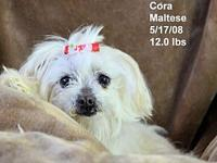 Cora's story Please contact Constance