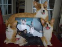 CORGI PICTURE FRAME. A FRAME SURROUNDED BY ALL THE