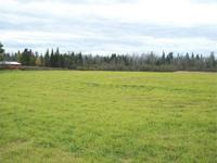 Beautiful 72 acre farm parcel of land with 15 acres of
