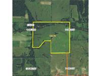This remote Wayne County, Iowa 124 acres m/l farm has
