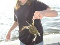 Crabbing and fishing charters! Go crabbing on a
