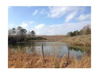 This 68 acre tract is situated on County Roads 159 & &