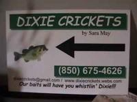 I HAVE CRICKETS FOR SALE. LOCATED ON BROWNSDALE LOOP RD