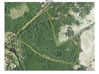 Historical timber tract. Great topography. 2001 pine