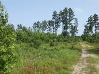 The +/- 563 acre Washerman's Bay Tract is a stunning