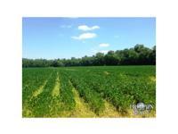 Gain access to - Dunn Rd . Soil Types - Tensas Sharkey