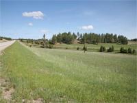 Longhorn Draw - Custer, South Dakota 20 acres -