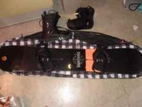 I bought this custom Burton V-Rocker last winter and