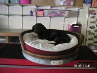Custom dog or cat beds made from solid one inch oak