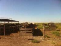 Calf pens for sale large and small  Location: Hanford