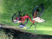 I am selling a custom three wheel tricycle. It has an