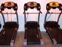 Part Number: 530 T Manufacturer: CYBEX Cybex Pro Plus