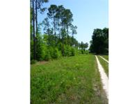 30 Acres Jackson County, Florida. $79,900. SELLER