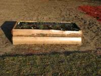 These raised beds are made of cypress logs. . They are