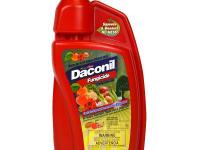 Use the Daconil 1-Pint Concentrate Fungicide to prevent