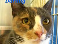 DARLING is a sensitive-souled and beautiful girl who'd