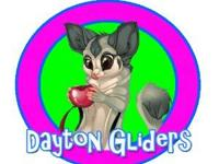 Dayton Gliders is a small home business, but we have
