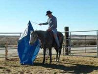 de Golyer Horse Training is a facility that is
