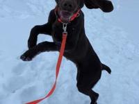 My story Debbie here! I am a fun loving energetic girl.