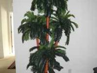 DECORATIVE PALM TREE INDOOR USED . CALL  . $ 50 .