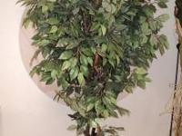 Great condition on this decorative tree! 1 - 7 ft fica