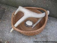 Deer Antler Pine Needle Baskets are a one-of-a-kind