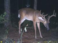 BOONES CREEK HUNTING CLUB. COM--- The best 11.000 ac