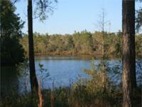 93' OF MAGNOLIA LAKE IN DEFUNIAK SPRINGS, FLORIDA just