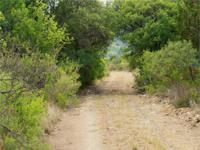 Red Bluff Ranch is 300+/- acres located approximately 6