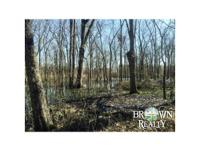 Access-Hwy 132 Timber Stand-good Hunting- Deer, Small