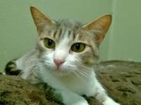 Delores's story Delores is a sweet, reserved girl with