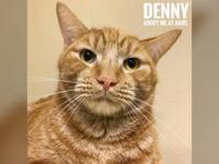 Denny's story My friend Kenny and I here are bonded,