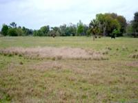 Description 23+/- acres in Arcadia, FL with 1,300+/-