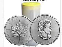 Coin: Country/Region of Manufacture: Precious Metal