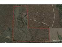 #45213 - Hunter's Specialty: 152+ acres of scattered