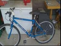 Blue diamondback mountain bike. Works fine. All tires