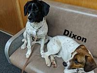 Dixon's story Please understand we must conduct home