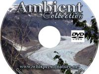 Whispers of Nature Relaxing Ambient Collection We have