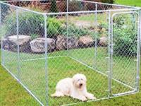 I am selling dog kennel this is not my dog or kennel
