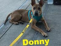 Donny's story Please understand we must conduct home