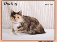 Dorthy's story This beautiful gal is Dorthy! She would